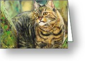 Photorealism Greeting Cards - Palo Verde Kitty Greeting Card by Baron Dixon