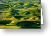 Lines Photo Greeting Cards - Palouse Contours Greeting Card by Mike  Dawson