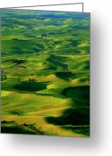 Wheatfields Photo Greeting Cards - Palouse Morning Greeting Card by Mike  Dawson