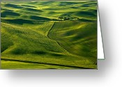 Lines Greeting Cards - Palouse Patterns Greeting Card by Mike  Dawson