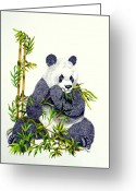 Pads Drawings Greeting Cards - Panda  Greeting Card by Terri Mills