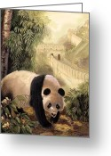 Panda Greeting Cards - Panda with the Great Wall of China Greeting Card by Gina Femrite