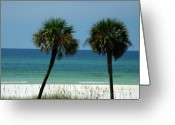 Florida Beaches Greeting Cards - Panhandle Beaches Greeting Card by Susanne Van Hulst