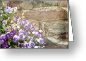 Pussy Willow Blooms Greeting Cards - Pansies and Pussywillows Greeting Card by Carol Senske