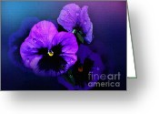 Flower Blossom Greeting Cards - Pansys Greeting Card by Robert Foster