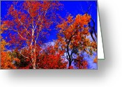 Indiana Autumn Greeting Cards - Paprika Greeting Card by Ed Smith