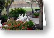 Spirit Hawk Art Greeting Cards - Parade of Geese 59 Greeting Card by Joyce StJames