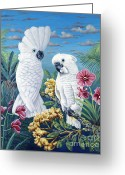 Umbrella Cockatoo Greeting Cards - Paradise for Too Greeting Card by Danielle Perry