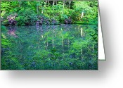 Wv Greeting Cards - Paradise Greeting Card by Melissa Petrey