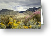 "\""sunset Photography\\\"" Greeting Cards - Paradise Mountain Greeting Card by Andrea Hazel Ihlefeld"