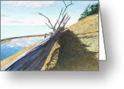 Landing Painting Greeting Cards - Parego Greeting Card by Perry Woodfin