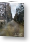 Tuileries Greeting Cards - Paris Nature - The Tuileries Row Of Trees  Greeting Card by Kathy Fornal