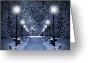 Snowy Night Digital Art Greeting Cards - Park at Christmas Greeting Card by Jaroslaw Grudzinski