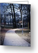 Deserted Greeting Cards - Park path at dusk Greeting Card by Elena Elisseeva