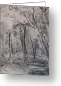  Parks Drawings Greeting Cards - Park Trail Greeting Card by Karen Boudreaux