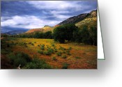 Redstone Greeting Cards - Passing Storm Greeting Card by Ric Soulen