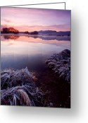 Frost Greeting Cards - Pastel Dawn Greeting Card by Mike  Dawson