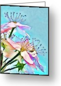 Morning Mist Images Greeting Cards - Pastel Petals Greeting Card by Judi Bagwell