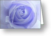 Purple Floral Greeting Cards - Pastel Purple Rose Flower Greeting Card by Jennie Marie Schell