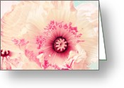 Delicate Mixed Media Greeting Cards - Pastell poppy Greeting Card by Angela Doelling AD DESIGN Photo and PhotoArt