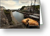 Charlestown Greeting Cards - Pasty on the Harbour Greeting Card by Rob Hawkins