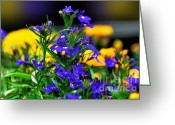 Blue Flowers Greeting Cards - Patch of Color Greeting Card by Kaye Menner