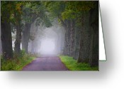 The Way Forward Greeting Cards - Path Going To Mist Way Greeting Card by Jacglenphoto