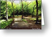 Judy Greeting Cards - Path Through Judy Woods Greeting Card by Paul Dene Marlor