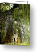 Search Greeting Cards - Path to Inner Peace Greeting Card by Karen Koski