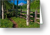Colorado Photographers Greeting Cards - Path to Pyamid Peak Greeting Card by Paul Gana
