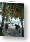 Umbrella Photo Greeting Cards - Path To Smathers Beach - Key West Greeting Card by Frank Mari