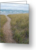 Arcadia Greeting Cards - Path to the Beach Greeting Card by Twenty Two North Gallery