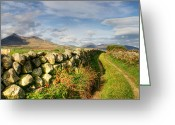 Northern Irish Art Greeting Cards - Pathway to the Mourne Mountains Greeting Card by David McFarland