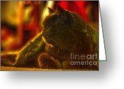 Vet Photo Greeting Cards - Patience Greeting Card by Joann Vitali