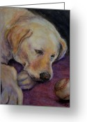 Pet Pastels Greeting Cards - Patiently Waiting Greeting Card by Susan Jenkins
