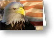 Marty Koch Greeting Cards - Patriotic Eagle Greeting Card by Marty Koch