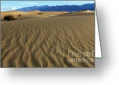 Mountains Of Sand Greeting Cards - Patterns In The Sand Greeting Card by Bob Christopher
