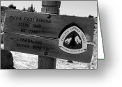 Crest Greeting Cards - PCT Scenic Trail Greeting Card by David Lee Thompson