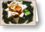 Arne J Hansen Greeting Cards - Peace Rose Greeting Card by Arne Hansen