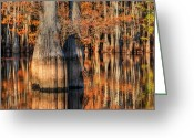 Fall Photographs Greeting Cards - Peaceful Autumn Afternoon Greeting Card by Ester  Rogers