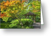 Japanese Maple Greeting Cards - Peaceful Autumn Greeting Card by Joan Carroll