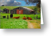 Resting Greeting Cards - Peaceful Cows Greeting Card by Harry Spitz
