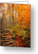 Kathy Jennings Greeting Cards - Peaceful Pathway Greeting Card by Kathy Jennings