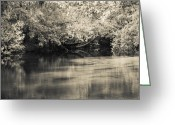 Carolyn Marshall Greeting Cards - Peaceful Springs Greeting Card by Carolyn Marshall