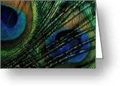 Peacock Greeting Cards - Peacock Eyes Greeting Card by Jerry McElroy