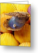 Concepts Greeting Cards - Pearl in oyster shell Greeting Card by Garry Gay