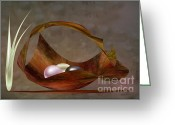 Lacy Abstract Greeting Cards - Pearls in Bowl Greeting Card by Anne Lacy