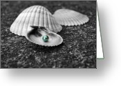 Pearls Greeting Cards - Pearls of Wisdom I Greeting Card by Jai Johnson