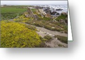Golf Green Greeting Cards - Pebble Beach Golf Course Panorama - California Greeting Card by Brendan Reals