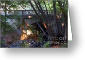 College Campus Greeting Cards - Pedestrian Bridge And Strawberry Creek  . 7D10132 Greeting Card by Wingsdomain Art and Photography
